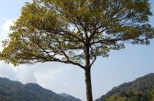 石门国家森林公园位于广东从化市东北部,有华南地区仅存的原始次生林,被称为北回归线的一片绿洲。公园里自