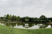 桂林乐满地球场,第一次来,球场风景很美。针叶树木还蛮多的,天气舒服!又有游乐园在旁边,应该多住几天!