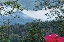阿里山云海