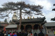 五台山一日游线路:上午香火最旺的五爷庙—五台标志大白塔所在的塔院寺—中国第二古寺的显通寺—开花献佛的
