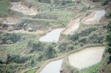 原汁原味的元阳梯田,没有任何调色,手机拍摄。 元阳梯田位于云南省元阳县的哀牢山南部,是哈尼族人世世代