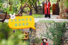 山西千年窑洞古村,变身童话般的最美民宿村 山西临汾云丘山的康家坪古村,有两千多年的历史,村子依山而建