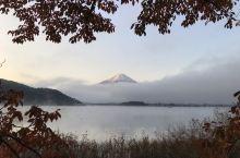 富士吉田河口湖的秋真是浓艳无比。从清晨湖边的轻雾缭绕,到中午艳阳高照,再到傍晚夕阳西下落日余晖中。枫