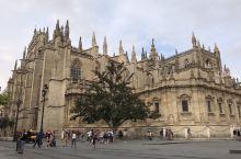塞维利亚大教堂是西班牙南部安达卢西亚区省会城市塞维利亚市内的著名宗教名胜。是世界第三大教堂。该教堂建