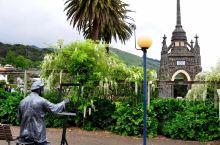 新西兰南岛阿卡罗拉是一个具有法国风情的小镇, 虽说身处新西兰,但飘扬的红白蓝三色旗和特色鲜明的法式建