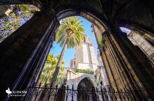 巴塞罗那主教堂 巴塞罗那核心礼拜堂,是天主教巴塞罗那总教区的主教座堂,哥特式建筑,主立面点缀有许多怪