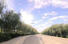 蒙达陶瓷文化广场 夏天的达拉特凉快,是个避暑圣地啊