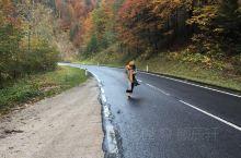 格绍开往哈尔施塔特的公路两旁绿树环绕溪水潺潺… 树叶慢慢从绿色渐变为金黄,秋意渐浓! 小溪上悠长的独