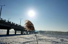 2020年1月1日 迎接 新的一年 新的一天 阳光灿烂 白雪皑皑 你从远方走来 我从此地飞得更高 肇