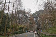 雨蒙蒙,雾蒙蒙的天,青城山完全被浓浓的雨雾笼盖。只在此山中,云深不知处呀。 西蜀第一山的门楼高高耸立