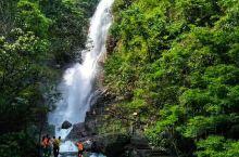 【贺州姑婆山】广西天然氧吧国家森林公园  贺州姑婆山是华南地区最大的天然氧吧,森林覆盖率99%,负氧