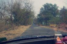 坎赫里石窟就位于孟买的甘地国家公园内,在孟买的北边,离市区有点远,公园也很大,适合花一整天来徒步,不