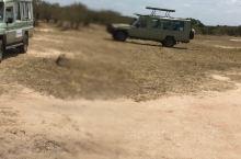 非洲大草原,一生要去一次的地方。