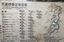 天星桥景区位于黄果树大瀑布下游7千米处,这里主要观赏石、树、水的美妙结合,是水上石林变化而成的天然盆