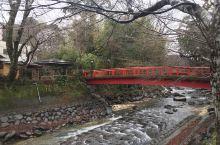静冈伊豆的修善寺是个很不错的休假地,有山有水(温泉),有很漂亮的日式旅馆,还有非常好的日式服务。