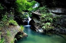 七翁井位于鹤山市鹤城镇昆山和仑山之间的一条山涧中。位于深处的山涧,自然就显得格外幽静、清新。山涧中的