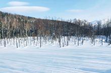 冬季北海道 网红景点打卡指南  去年二月份的时候去了一次北海道,报了几个一日游的团,打卡了青池、白须
