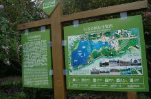以当地文化名人齐白石先生名字命名的公园,位于湘潭主城区,规模较大,里面植被丰茂,环境整洁,公园中央广
