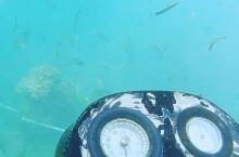 巴厘岛,蓝梦岛,是个适合玩潜水的好地方。潜入水底之前,要做好充分的准备,背好氧气瓶,带上铅块,还有潜