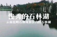 云南昆明石林风景区里俊秀的石林湖。