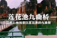 云南昆明石林风景区里的莲花池九曲桥。