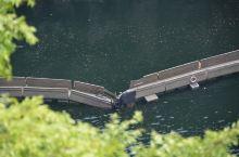 辰山植物园真的好大啊,一天根本玩不够~虽然矿坑浮桥关闭了,有点小失落,但是爬了一下71米高的辰山,登