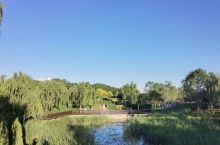 好漂亮的马峦山郊野公园,风景很漂亮!
