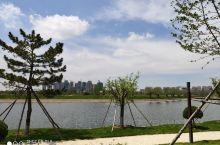 湖边景色,
