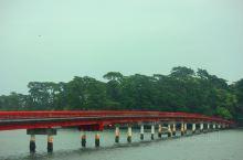 日本三大景点之一,松树占领大小岛屿,