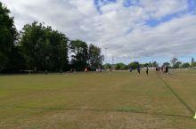 怀卡托大学的橄榄球场(一)