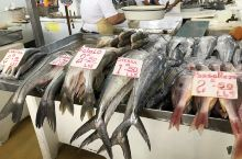 巴拿马城的老鱼市,买点虾和鱼片回去做