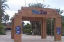 凤凰城野生动物园,这里有狮子老虎河马等大型动物,也有一些非洲的动物品种。