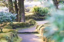 """鹿儿岛,看起来就似乎游离于这个时代之外,那里有""""日本最后的武士""""、德川家族最著名的女人笃姬……是进入"""
