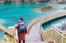 【雪山下的小九寨】 蓝月谷在玉龙雪山下,一般游览完玉龙雪山下来都会到这边逛逛,很美。水是雪山上流下来