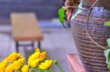 #灵山小镇·拈花湾#  灵山禅意小镇位于无锡市滨湖区,与著名的灵山大佛依山为邻。这里生态环境优美,弘