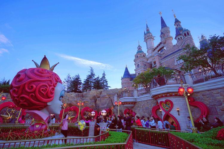 Alice in Wonderland Maze4