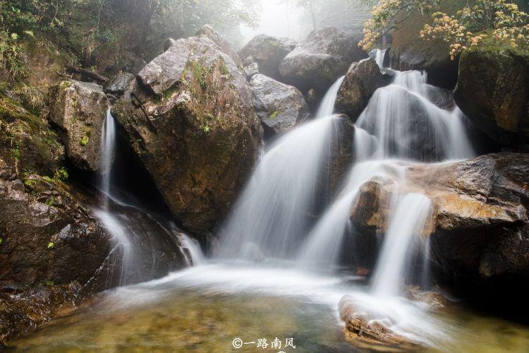 Mangshan National Forest Park2