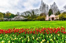 如果说 杭州 是人间天堂的话,那么太子湾就是天堂里的仙境。尤其是在这个美好的四月份的时候,到处都是鲜