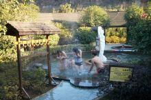 一支芦花笑晚秋 咸宁太乙温泉度假村,第三个是太乙湖,后面是太乙温泉度假村的温泉,这样的池子有二三十个