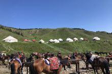 大美新疆-白杨沟哈萨克族牧民草场一日游