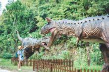 在湖北咸宁的柃蜜小镇里 又一个地方特别吸引我——恐龙谷 它是一座集科普、游乐于一体的恐龙主题乐园 利