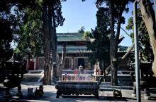 伏羲庙,有洛书河图,有千年以上柏树,寻根问祖