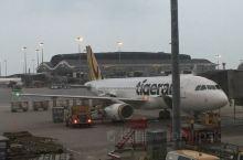 老虎航空TR2058新加坡樟宜-香港
