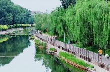 孩子们非常开心的捞 位于山西长治市潞阳门路的滨河公园 是一座综合性游园,亲水适合小朋友,绿化非常好,