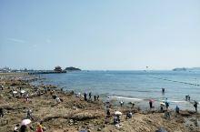 青岛第一站,栈桥 岩石,海带,海蛎子壳,是青岛海边的特色 水天一色,海水蓝绿蓝绿的,拍照根本无需任何