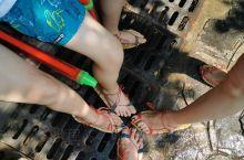 今天带小朋友玩水,确实安逸!1.4米一下的免票!以椿记烧鹅结束今天愉快的行程
