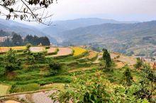 贵州之旅D4:肇兴侗寨,堂安梯田 后面这几天不看山水,来了解一下贵州的少数民族文化。这里少数民族的寨