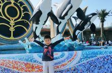 小盆友痴迷于恐龙鳄鱼鲨鱼和虎鲸,海昌开业也块一年了,这个国庆临时起意就带他近看一下现实世界中的虎鲸,