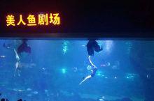 #海洋世界.美人鱼剧场#