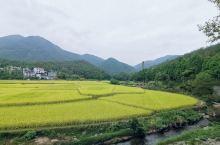 十一长假选择台州3日跟团游,相对小众景点,游客不算很多。第三天游览千年古刹国清寺,寺庙幽静,景色古朴